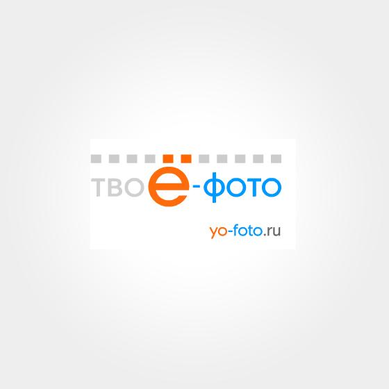 Сеть профессиональных фотостудий «Ё-Фото» Клиенты