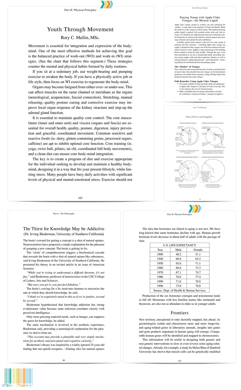 «Secrets of Rejuvenation» — дизайн с «нуля» и вёрстка книги (англ.). Автор Альмин Издательство «Spiritual Journeys» — 220 стр. Создание книг Портфолио