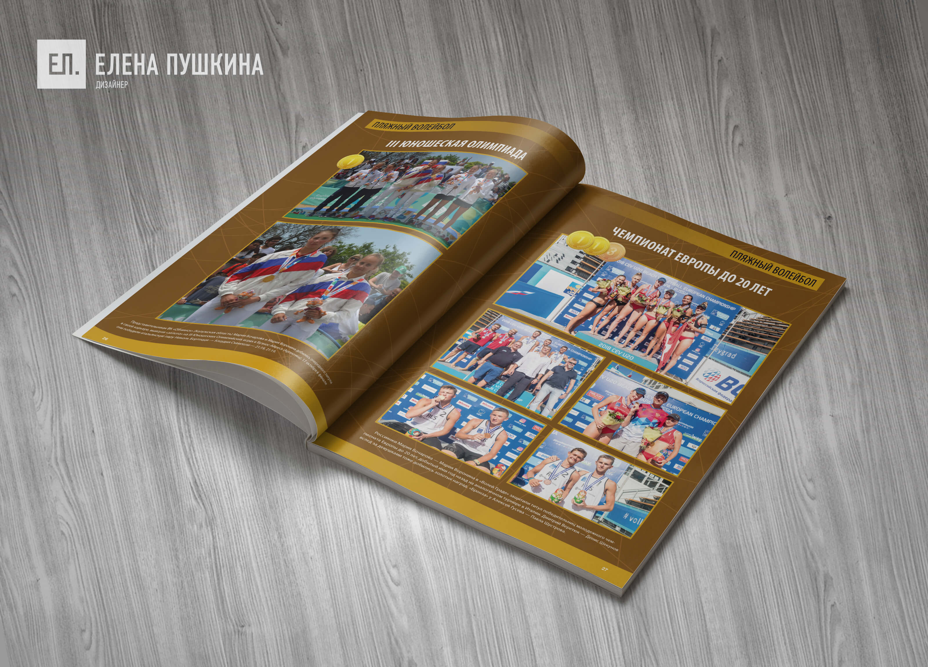 Буклет отчётной конференции ВФВ «Волейбол. Достижения 2017–2018»— разработка дизайна с«нуля» ивёрстка брошюры Дизайн брошюр, буклетов Портфолио